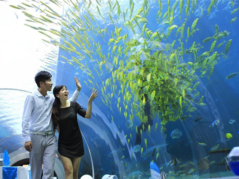 海棠湾天房洲际度假酒店   与亚洲最大的免税商场为邻